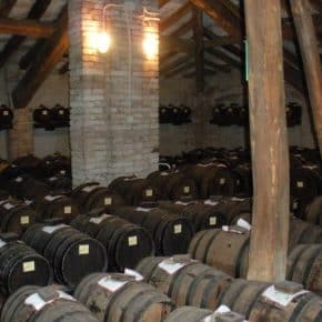 Balsamic Vinegar Heaven, Modena, Italy