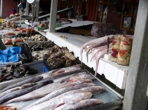 Puerto Montt, Chile: Fresh Seafood