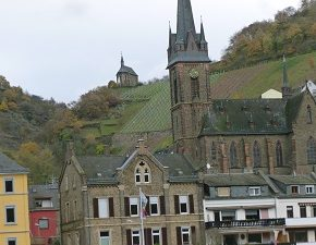 Wine River/Rhine River Cruise on AMAWaterways